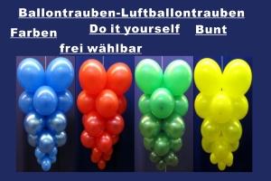 Ballontrauben Standard Bunt