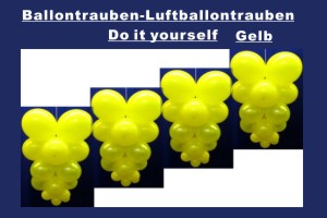 Ballontrauben Standard Gelb