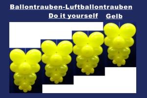 Ballontrauben Standard Gelb