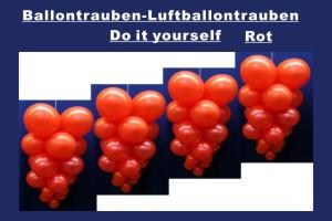 Ballontrauben Standard Rot