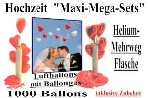 Hochzeit MaxiMega-Set