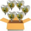 Tinkerbell Holografik Luftballons mit Helium, Kindergeburtstag Geschenke, 6 Stück