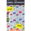 Geburtstag  String 30 Deko