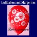 Motiv-Luftballons-Margeriten