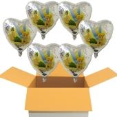 6 Tinkerbell Holo Luftballons mit Helium