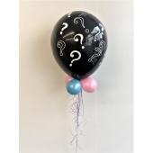 Gender Luftballon Girl or Boy ?
