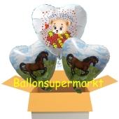 3 Luftballons aus folie mit Pony und Baerchen