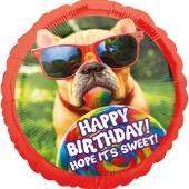Luftballon Happy Birthday Basset Hund zum Geburtstag, ohne Helium