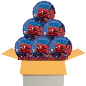 6 Stück Spider-Man luftballons im Karton, inklusive Helium
