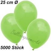 Luftballons 25 cm, Apfelgrün, 5000 Stück