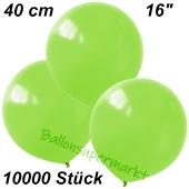 Luftballons 40 cm, Limonengrün, 10000 Stück
