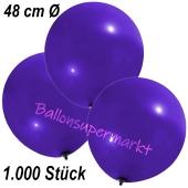 Große Luftballons, 48-51 cm, Violett, 1000 Stück