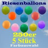 Riesenballons 250er, 5 Stück