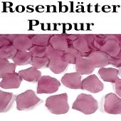 Rosenblaetter Purpur 100 Stueck
