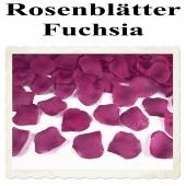 Rosenblaetter Fuchsia 100 Stueck