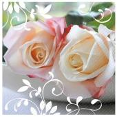 Servietten Flamina - Weiße Rosen, 20 Stück, 3-lagig