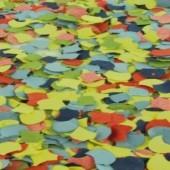 Konfetti zu Karneval und Fasching, Streukonfetti, 50 Gramm