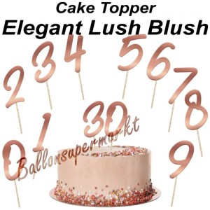 Zahlen Cake Topper Elegant Lush Blush, Dekoration zum Geburtstag