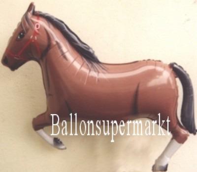 Pferd Luftballon, brauner Hengst