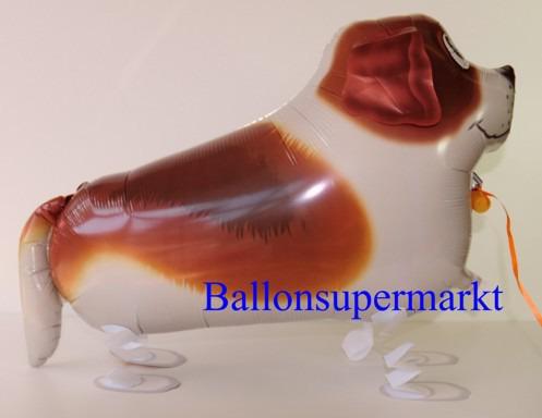 Bernhardiner-Airwalker-Luftballon