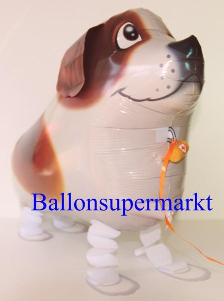 Lustiger-Bernhardiner-Luftballon-mit-Helium