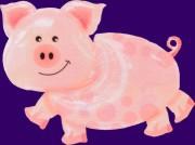 Glücksschweinchen Luftballons