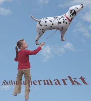 Dalmatiner-Luftballon