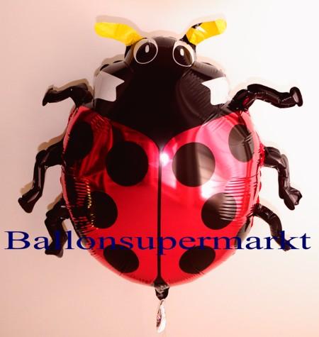 Maikaefer-Luftballon-aus-Folie, Marienkäfer