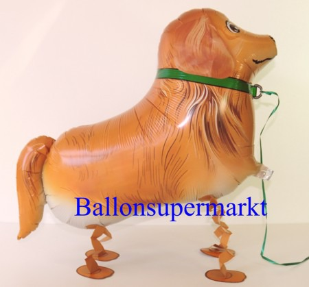 Golden-Retriever-Airwalker-Luftballon