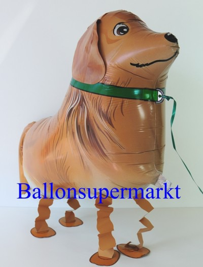 Lustiger-Golden-Retriever-Luftballon-mit-Helium