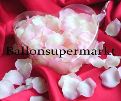 Rosenblätter Creme-Rosé