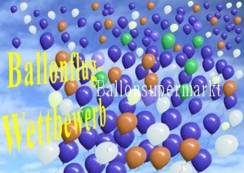 Ballonflug-Wettbewerb-Karte