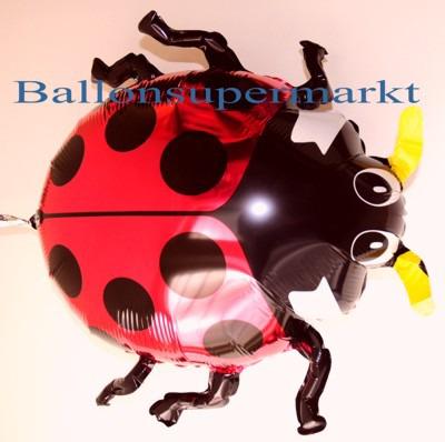 Marienkaefer-Folienballon-Luftballon-Kaefer-aus-Folie
